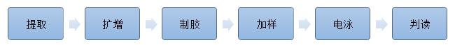 男性不育染色体微缺失基因检测试剂盒(Multiplex-PCR法)