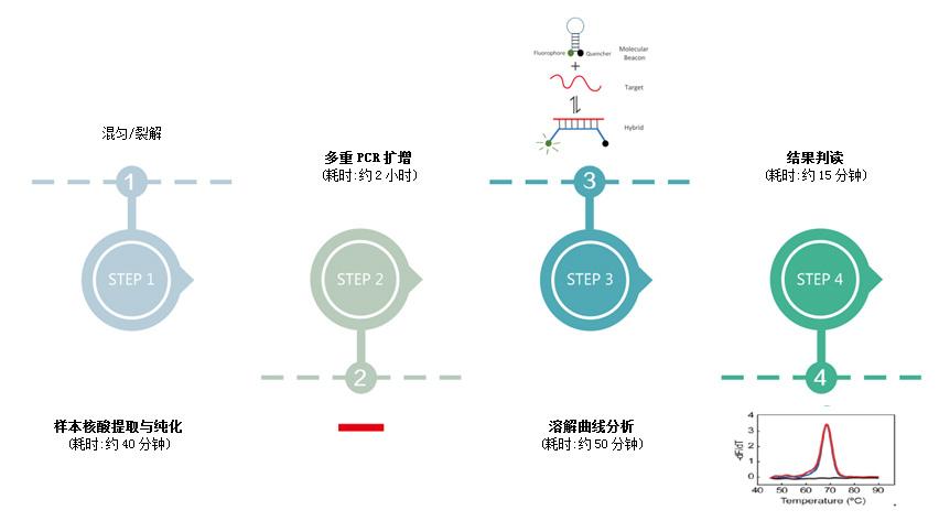 呼吸道病原体多重分型检测试剂盒(多重荧光探针熔解曲线法)