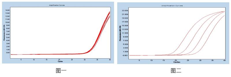 EB病毒核酸检测试剂盒 (PCR-荧光探针法)