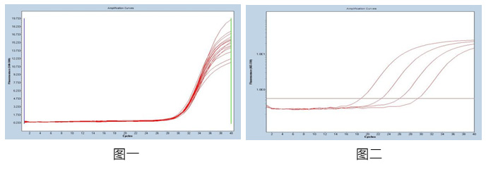 肺炎支原体核酸检测试剂盒(PCR-荧光探针法)