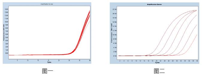 腺病毒核酸检测试剂盒(PCR-荧光探针法)